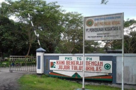 Peruntukan Beberapa Wilayah Afdeling di PTPN II Tidak Jelas