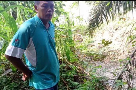 Warga Kwala Begumit Mengeluh Minta Komisi D DPRD Langkat Sidak Ke PCI