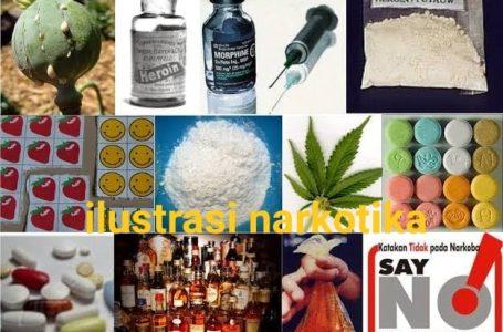 Ahli: Narkotika Harus Diurus Sektor Kesehatan, Bukan oleh Hukum Pidana